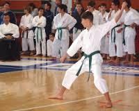 karate ragazzi ferrara meeting