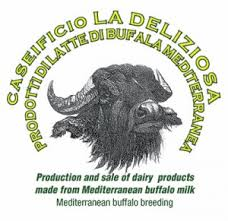 formaggi bufala degustazioni